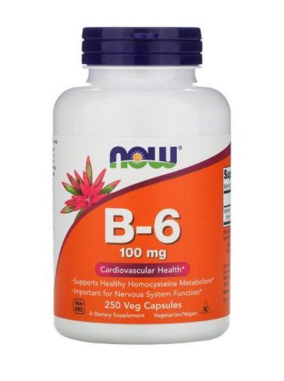 Now Foods B-6 100 mg, 250 Veg Capsules