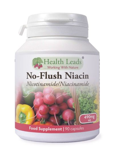 Health Leads No-Flush Niacin Vitamin B3 (Nikotinamid / Niacinamid) 490 mg x 90 Kapseln